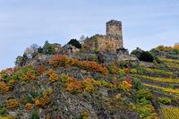 1 BA Burg Gutenfels 2  f .jpg