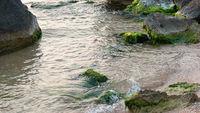 Beautiful shallow sea and rocks