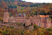 1 Schloss Heidelberg im Herbst.jpg