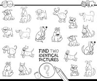 find two identical dog characters color book