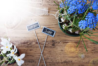 Sunny Flowers, Signs, Text Garden Sale