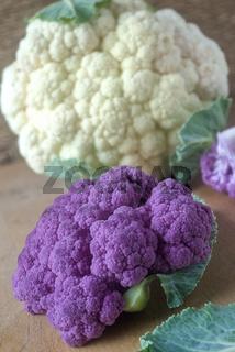 Blumenkohl, weiß und violett