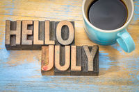 Hello July word abstract in wood type
