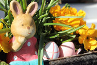 Easter bunny with eggs and flowers