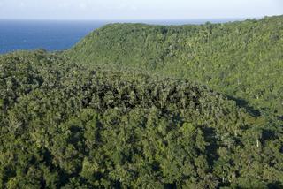 Tal der Tausend Palmen