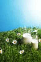 Milk jug and glass on flower field