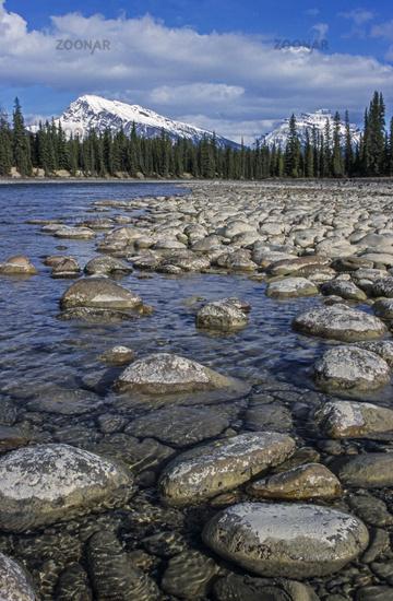 Athabasca River with Mount Hardisty and Mount Kerkeslin / Jasper National Park