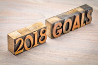 2018 goals banner in wood type