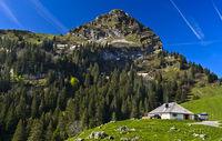 Mountain pasture dairy beneath peak Dent de Jaman, Col de Jaman, Les Avants, Vaud, Switzerland