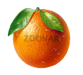 Orange fresh fruit with two leaves and water droplets, on white background.