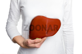 Woman holding human liver model at white body
