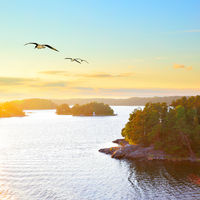 Scandinavian landscape at sundown
