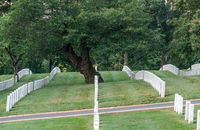 Rows of gravestone markers in Arlington Cemetery