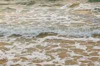 The shallow sea and small waves with foam on its tops