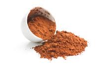 Tasty cocoa powder in bowl.