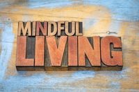 mindful living word abstract in wood type