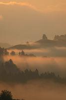 Golden morning Fog 2