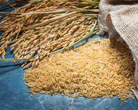 Natural brown rice uncooked