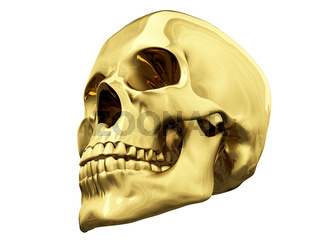 isolated gold skull over white