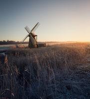 Herringfleet smock mill on a winter morning.
