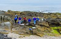 Students on a natural scientifc excursion on the cliffs near Burghead, Scotland, Great Britain