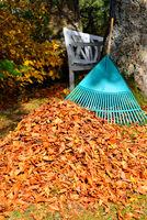 Laub im Garten harken im Herbst