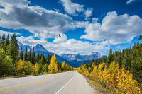 Travel to the Bow River Canyon in September