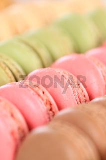 Macarons Macaroons Kekse macro hochkant Nachtisch Dessert aus Frankreich