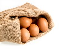 Freshly laid organic eggs in burlap sack isolated