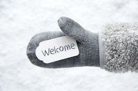 Wool Glove, Label, Snow, Text Welcome