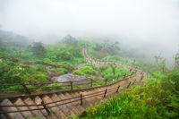 Way down from Adam's Peak