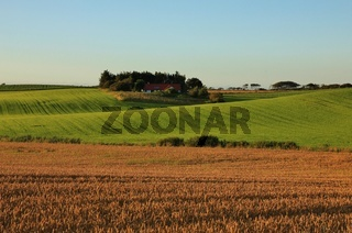 Rural summer landscape in Gottrup, Denmark.