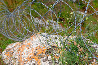 Modrn barbed wire in coils on limestone in grass