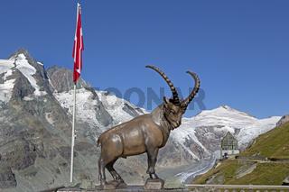 Steinbock Statue, Franz-Josef- Höhe, Großglockner, Hohe Tauern Nationalpark, Kärnten, Österreich, Europa