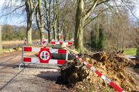 Traffic problems traffic signs storm damage fallen tree