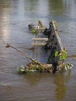 Hanover - Bench during high water, Germany