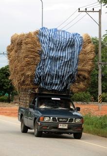 Ein Stroh Transport beim Dorf Fang noerdlich von Chiang Mai im Norden von Thailand.