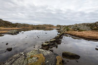 Pond by the trail, at the Rovaer archipelago, island in Haugesund, Norway. Stones making a path through the water.
