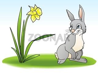 Hase auf einer Blumenwiese
