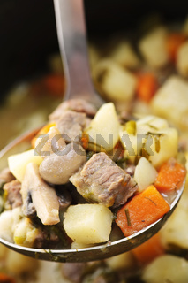 Beef stew in serving spoon