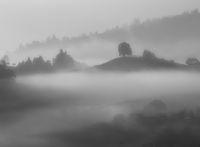 Landschaft im Morgennebel
