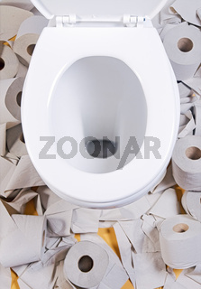 open toilet bowl with toilet-paper