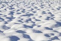 Verschneite Moorwiese im Tölzer Land