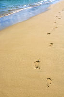 Footprints in the sand on the beach .