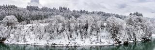 winter landscape froest