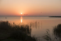 Sunrise at the Bodden on Fischland in Germany