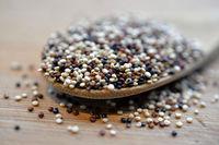 Quinoa Samen
