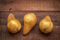 bosc pears on rustic wood