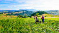 Farmer cultivates the soil with a horse in a mountainous area