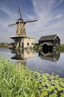 Windmill the Vriendschap
